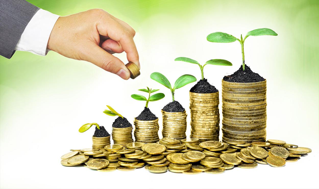 Спецоценка Трансфертное ценообразование Трансфертное ценообразование